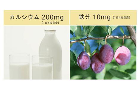 栄養素01