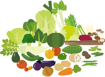 vegetable16