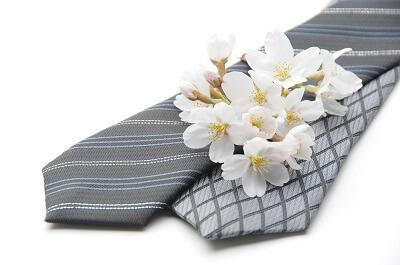 ネクタイ 桜