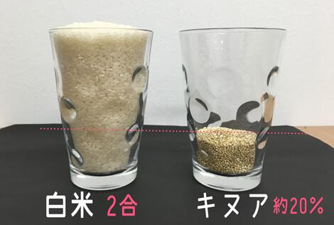 お米とキヌアの量