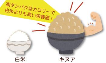 s001_キヌア栄養価