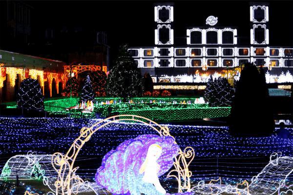 神戸フルーツ・フラワーパーク神戸イルミナージュ