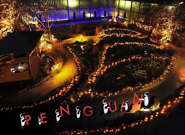 京都水族館「PENGUIN CARNIVAL(ペンギンカーニバル)」