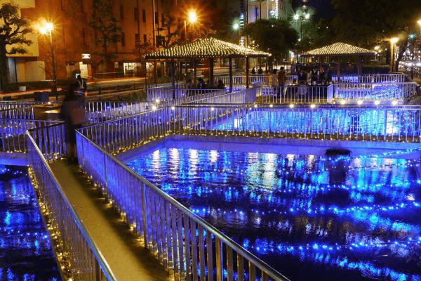 西川緑道公園 西川イルミ~光が織りなす水と緑の交差~