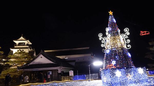 高知城 冬のきらめき