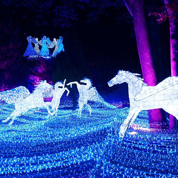 るり渓温泉 京都イルミエール 天空の森~希望の灯火~