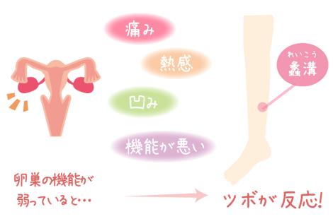 卵巣とツボ