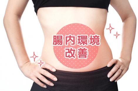 腸内環境改善