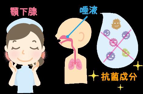 唾液の分泌を促す