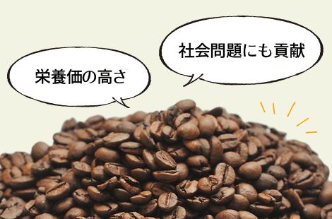 コーヒーフラワーの魅力