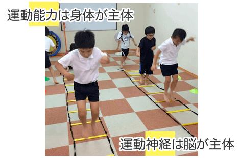 運動神経と運動能力
