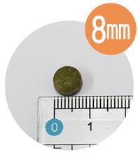 オーガニックレーベル葉酸 粒サイズ