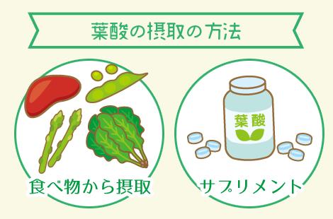 葉酸 摂取方法