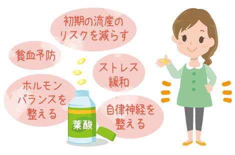葉酸の効果