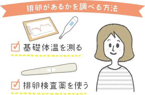 排卵 調査方法