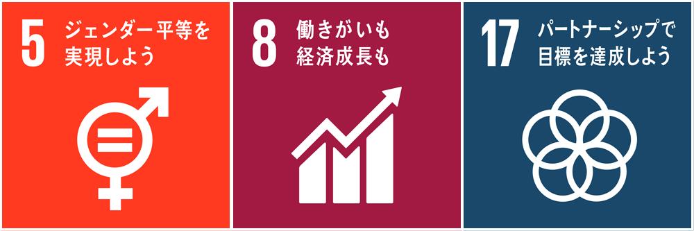 SDGs 5/8/17